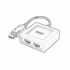 Conectica_Multiplicatoare_DisplayPort